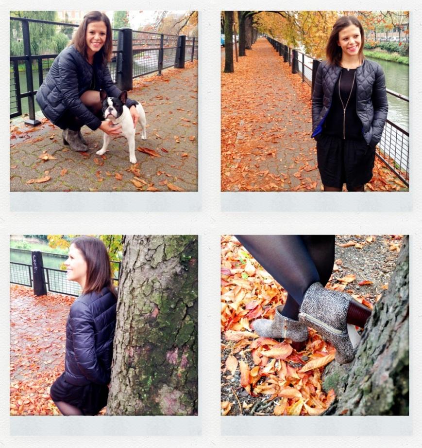 Moments d'automne