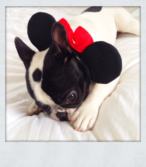 Boulie Minnie