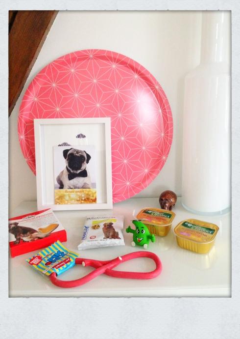 Doggy Box Janvier 2015