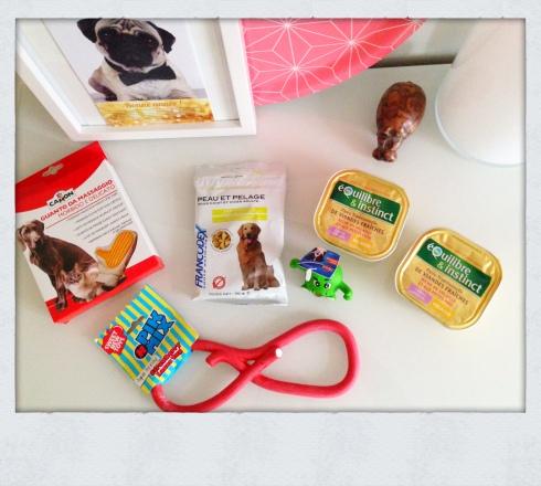 Doggy BOX Janv 2015